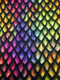 Écailles de dragon multicolores